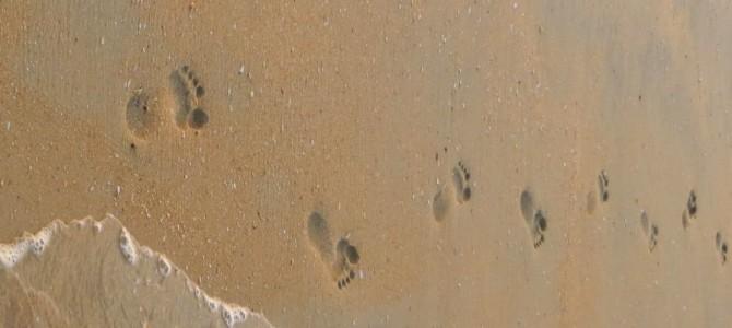 Let's walk together